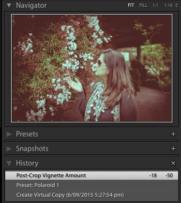 Preview Polaroid 1 - LR Adjustments